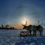 Югра богатство Сибири